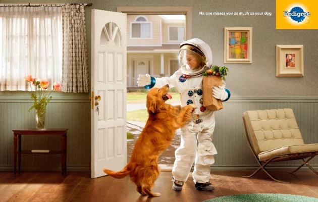 """Статьи Goodwix. Реклама Pedigree """"Никто не скучает по вам, как ваша собака"""""""